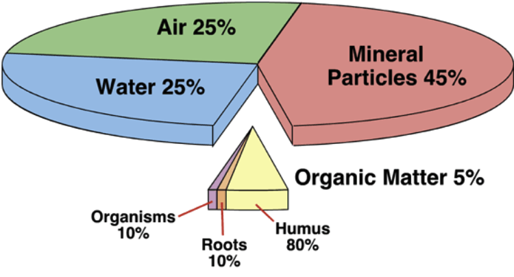 soil and soil dynamics apes sham cram